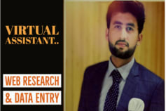 virtual assistant for web research, data entry research