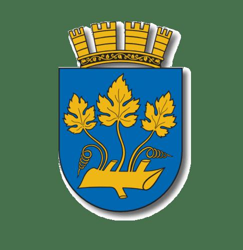 Stavanger Kommune Gurusoft Report