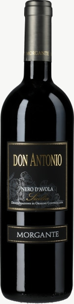 Don Antonio 2013