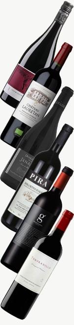 Weinpaket: Topseller - Rotweine für den Einstieg | 6* 0,75l