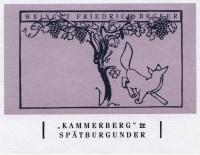 Pinot Noir Kammerberg Großes Gewächs 2012