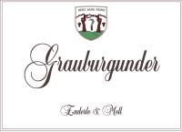 Grauburgunder trocken (unfiltriert) 2016