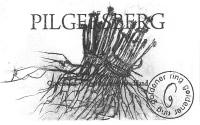 Pinot Noir Pilgersberg trocken 2017