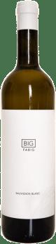 Sauvignon Blanc Barrel fermented 2017