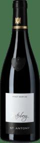 Pinot Noir Nierstein Paterberg Großes Gewächs 2016