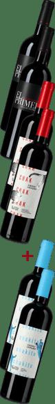Weinpaket: Viña Nahuel Entdeckerpaket | 6*0,75l