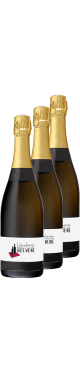 Weinpaket: Introduction Champagne | 6* 0,75l