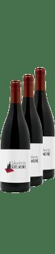 Weinpaket: Rotweinland Deutschland: Pinot Noir - Der feinste Einstieg | 12*0,75l