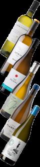 Weinpaket: Entdecker-Paket Weissweine Spaniens  | 6*0,75l
