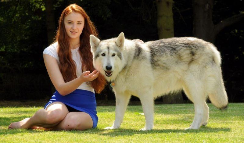 Game of Thrones facts about Sophie turner and Zunni