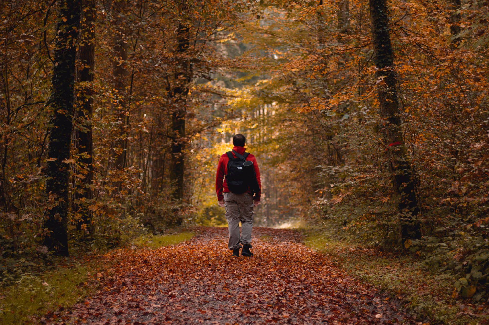 Surprise, Walking Is A Great Cardio Activity Too