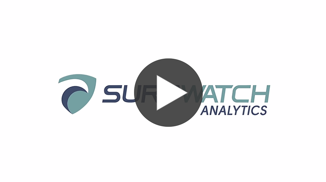 SurfWatch Analytics Video