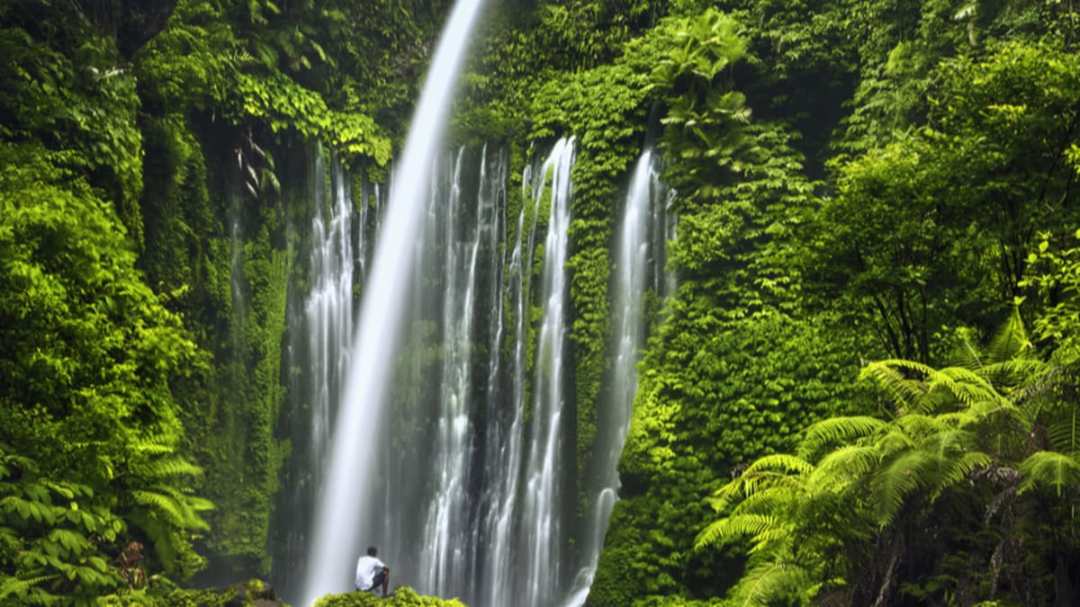 Lawatan Peribadi Lombok Bersama Tripfez
