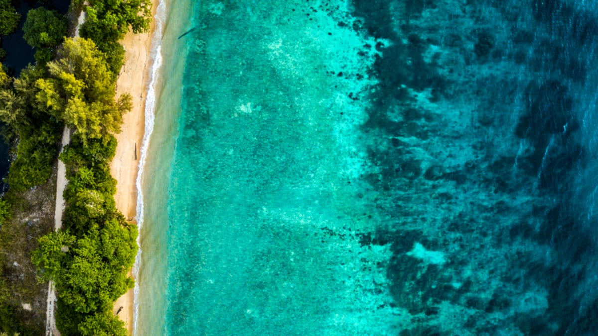 Salang Indah Pulau Tioman Bersama Tripfez