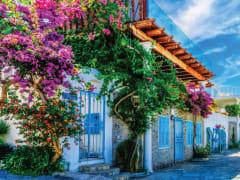 Tripfez Travel Turkey 2020 (Summer) package