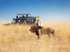 Tripfez Travel South Africa  package