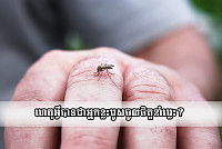 Why do mosquitoes love to bite some...