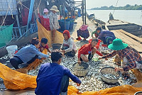 In 2019, Cambodia exported over...