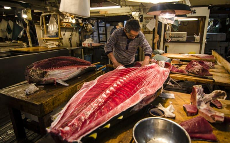 Tsukiji fish market halal navi