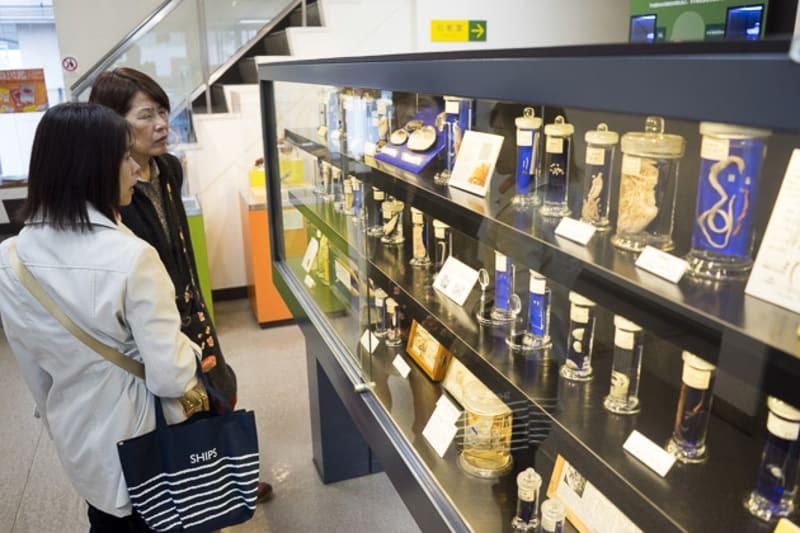 Parasitological Museum of Meguro halal navi