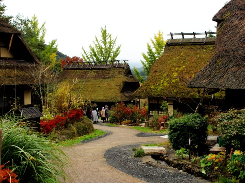 Traditional thatched roof houses