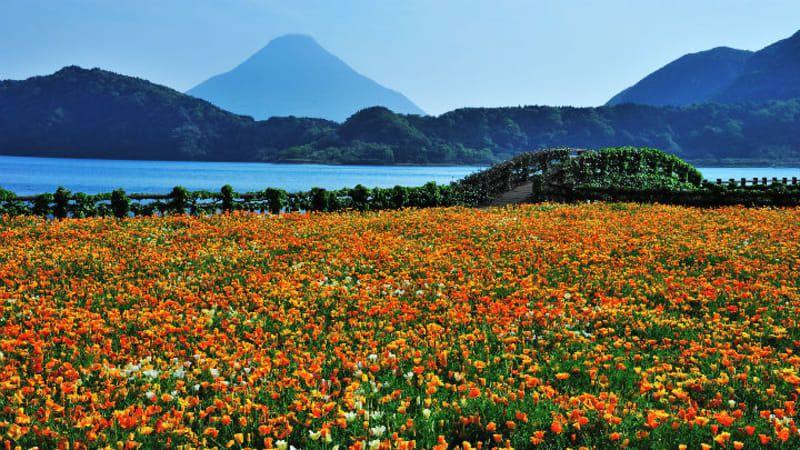 Lake Ikeda Kagoshima