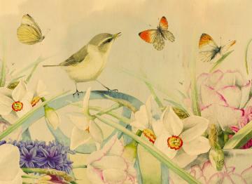 - vlinders-bloemen-vogel