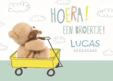 - Hoera-een-bere-baby-broertje