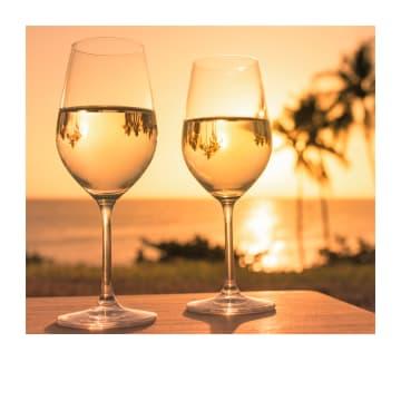 - Blanco-kaart-wijnglazen-met-palmbomen-Polaroid