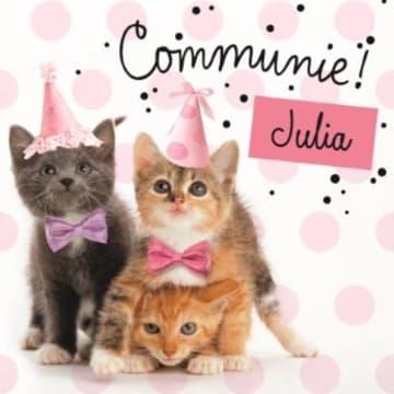 - zoete-katten-kaart-met-feesthoedjes-communie-kaart