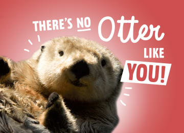 - theres-no-otter-like-you