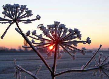 - sneeuwlandschap-met-ondergaande-zon