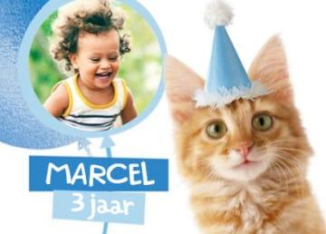 - een-fotokaart-met-een-feestlijke-kat