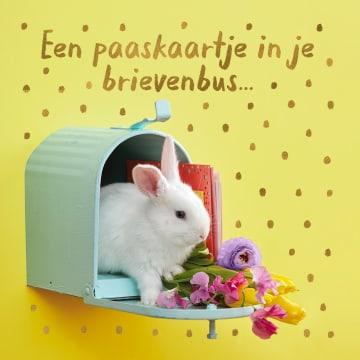 - Paaskaart-konijntje-in-brievenbus
