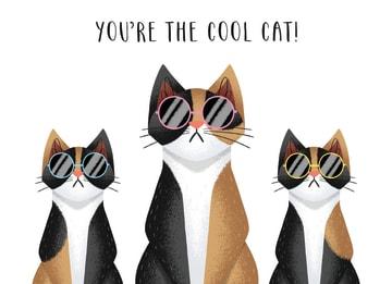 - cool-cat