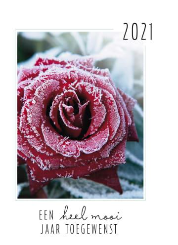 - nieuwjaarskaart-een-heel-mooi-2021-toegewenst