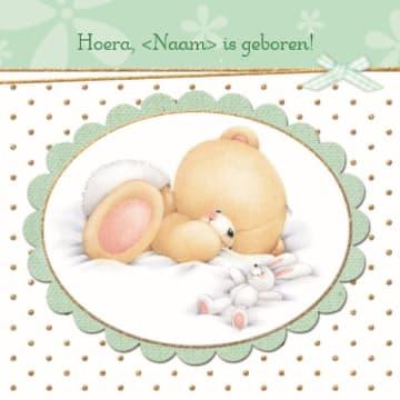 - geboorte-beer-konijn