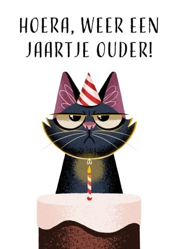 - Verjaardagskaart-grappig-Grumpy-Hoera-weer-een-jaartje-ouder-Folio