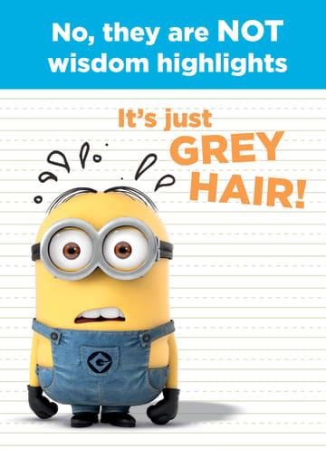 - not-wisdom-highlights-minion