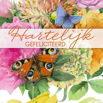 - een-kleurrijke-felicitatie-met-vlinders