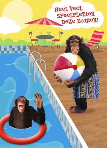 - apen-heel-veel-speelplezier