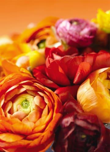 - boeket-van-bloemen-in-herfstkleuren