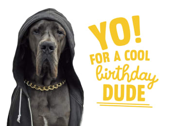 - yo-for-a-cool-birthday-dude