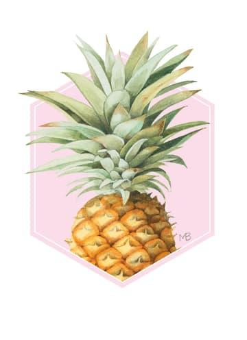 - ananas-marjolein-bastin