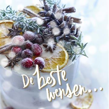 - de-beste-wensen-sneeuw