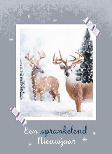 - 2-herten-in-de-sneeuw