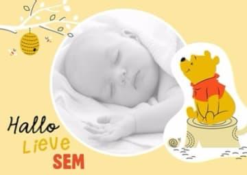 - fotokaart-winnie-the-pooh-hallo-lieve-sem