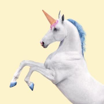 - unicornpaard