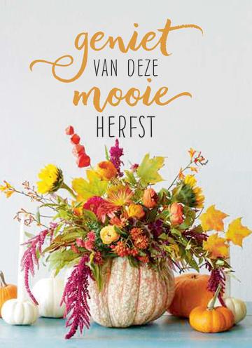 - herfst-kaart-geniet-van-deze-mooie-herfst