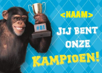 - sport-aap-cup